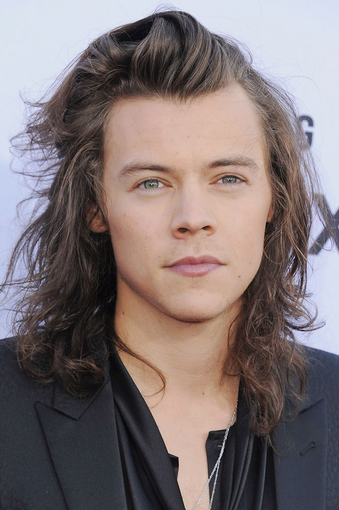 harry styles hair the top s hairstyles for 2016 crew 1078
