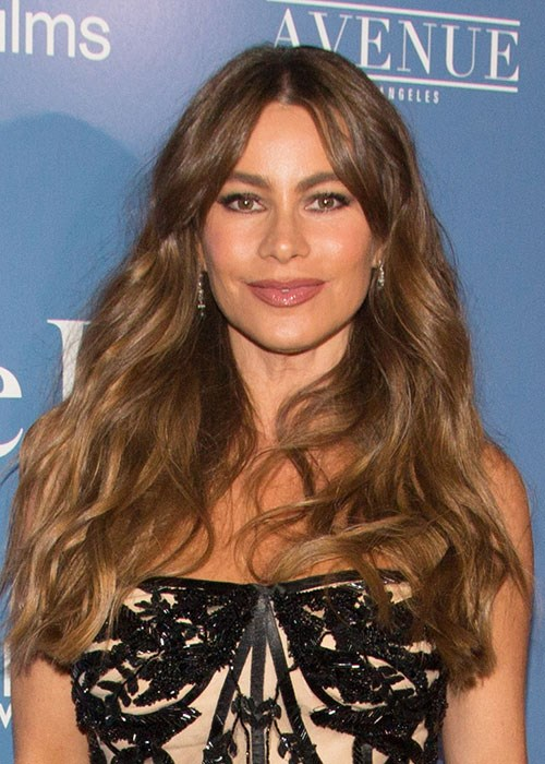 Sofia Vergara thick hair