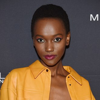 /media/30401/herieth-paul-budget-palette-s.jpg