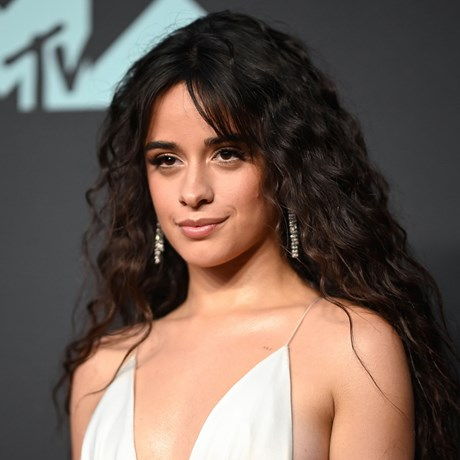 Camila Cabello Just Showed Everyone How To Nail Braids On Curly Hair