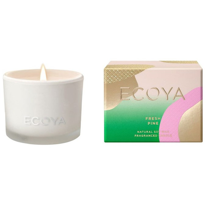 ECOYA-Christmas-Monty-Candle-in-Fresh-Pine
